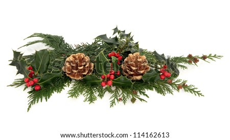 Christmas decoration of natural holly with red berry clusters and cedar leaf sprigs with gold pine cones over white background.