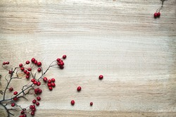 Christmas decoration red berries twig holly on rustic oak wood background with copy-space