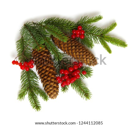 Christmas decoration with fir cones and fir branches isolated on a white background  #1244112085