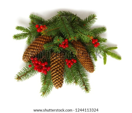 Christmas decoration with fir cones and fir branches isolated on a white background  #1244113324