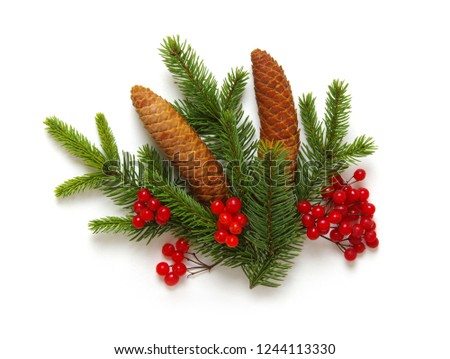 Christmas decoration with fir cones and fir branches isolated on a white background  #1244113330