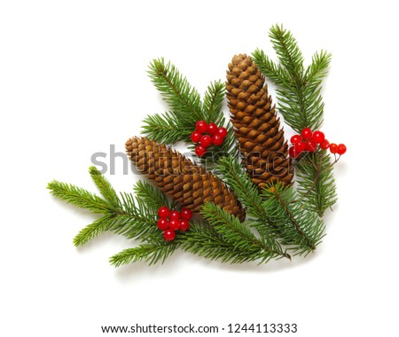 Christmas decoration with fir cones and fir branches isolated on a white background  #1244113333
