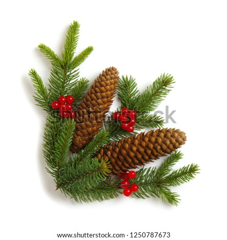 Christmas decoration with fir cones and fir branches isolated on a white background  #1250787673