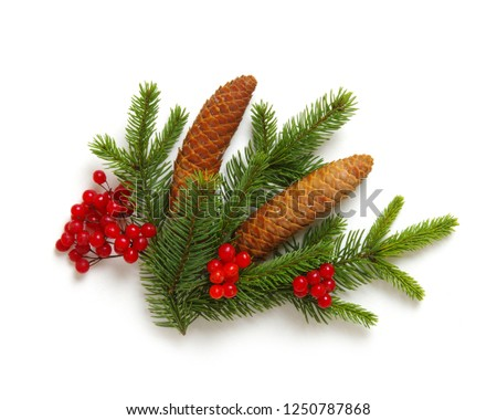 Christmas decoration with fir cones and fir branches isolated on a white background  #1250787868