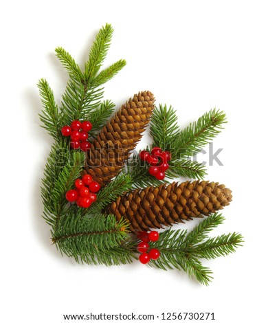 Christmas decoration with fir cones and fir branches isolated on a white background  #1256730271