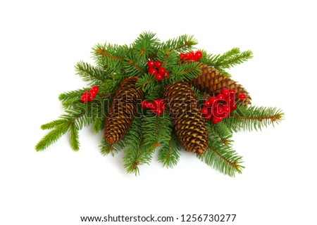 Christmas decoration with fir cones and fir branches isolated on a white background  #1256730277