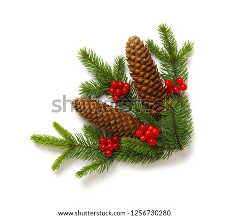 Christmas decoration with fir cones and fir branches isolated on a white background  #1256730280
