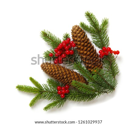 Christmas decoration with fir cones and fir branches isolated on a white background  #1261029937