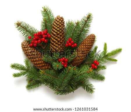 Christmas decoration with fir cones and fir branches isolated on a white background  #1261031584