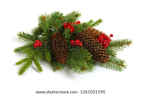 Christmas decoration with fir cones and fir branches isolated on a white background  #1261031590