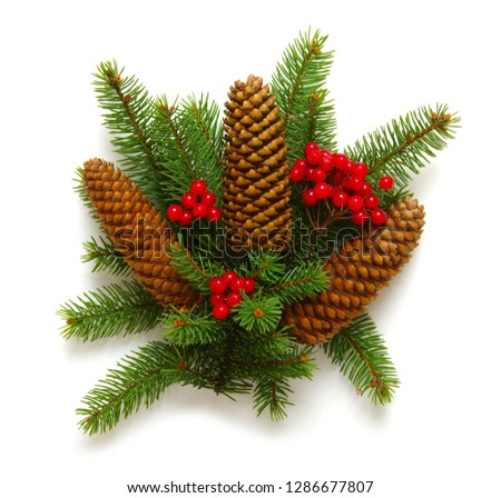 Christmas decoration with fir cones and fir branches isolated on a white background  #1286677807