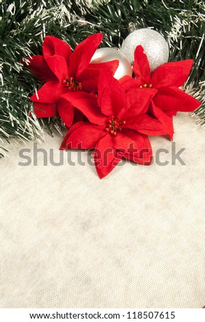 Christmas decoration with poinsettia, seasonal background for greeting cards with copy space