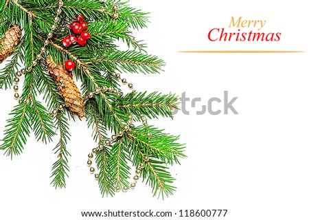 Christmas Decorations border  - beads; berry, con on fir tree branch