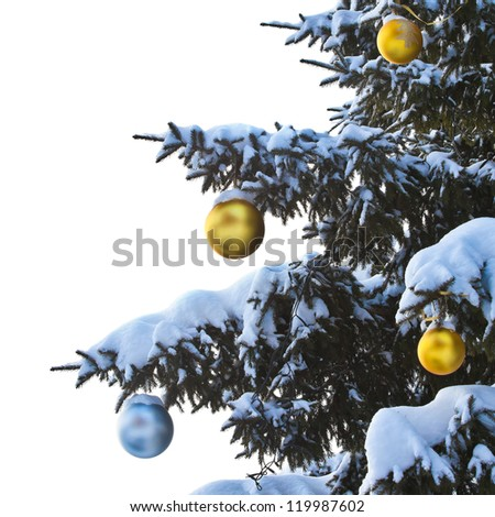Christmas decorations on snow-covered branches on a white background