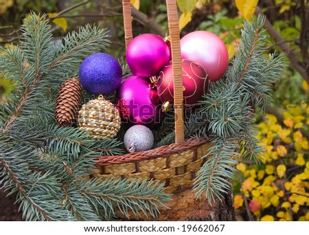 christmas decorations spheres in yellow basket on birch stub with branch - Birch Christmas Decorations