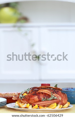 Christmas dinner of goose with fresh fruit and sage. Served with cranberry sauce and sweet potato souffle. Shallow DOF.