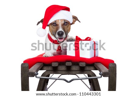 christmas dog on sleigh as santa