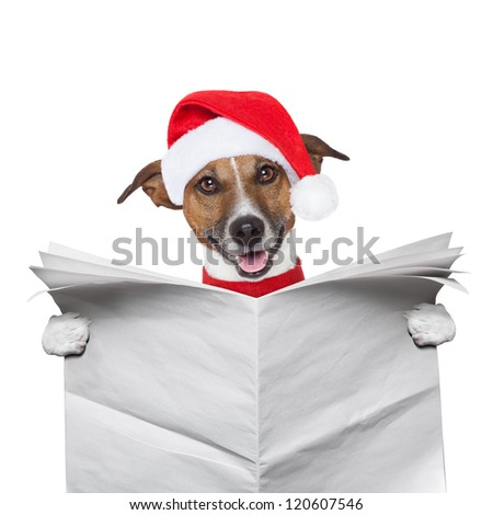 christmas dog reading a newspaper