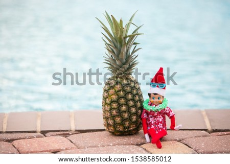 Christmas Elf lounging by the swimming pool celebrating time off. Christmas retail sales marketing clearance promotion