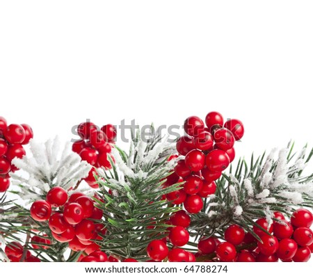 Christmas fir branch with red berries on white background