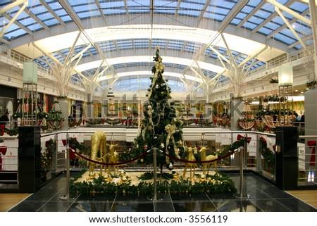 Christmas fir in mall