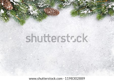 Christmas fir tree branch covered by snow on stone background. Xmas backdrop for your greeting card with space for text #1198302889