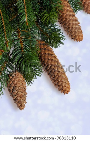 christmas frame with fir tree branch