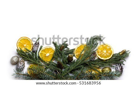 bottom border frame from tree branch golden pine cones dry oranges