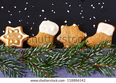 Christmas gingerbread cookies and spruce branch with snow.
