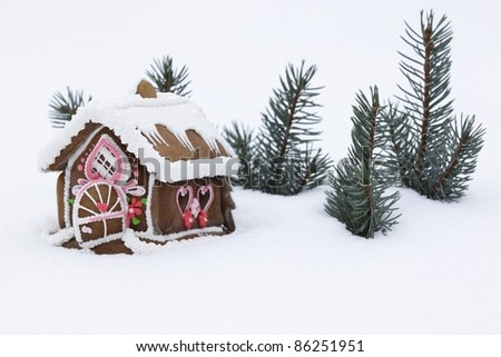 Christmas gingerbread house on the real snow