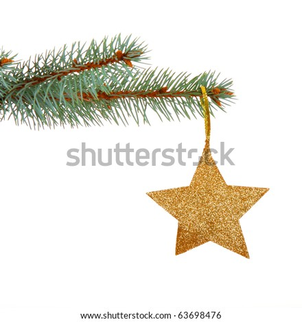 Christmas golden star on a christmas branch isolated on white