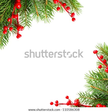 Christmas green fir and red holly berry, background - stock photo