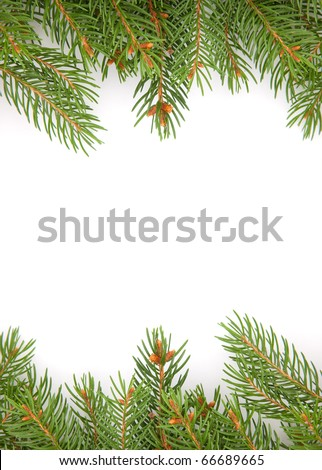 Christmas green framework isolated on white background #66689665