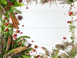Christmas greeting card. Text space. Christmas fir tree and heather decoration, fir cones and red berries of cranberry, cinnamon sticks and star anise spices, hazelnuts on a white wooden background.