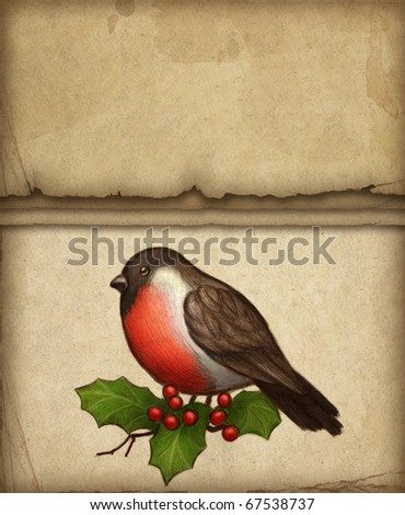 Christmas greeting card with drawing of bullfinch and holly