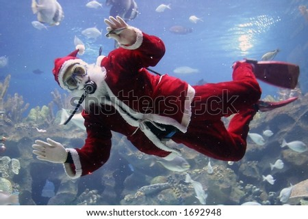 Christmas greeting from Santa Clause diver. (note: image is slightly grainy due to low light condition.)