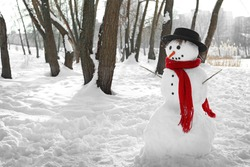 Christmas holiday concept. Funny snowman in wintertime