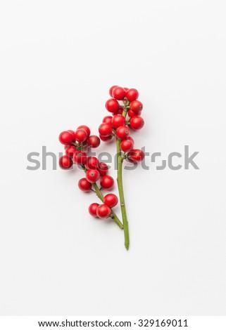 Christmas Holly #329169011