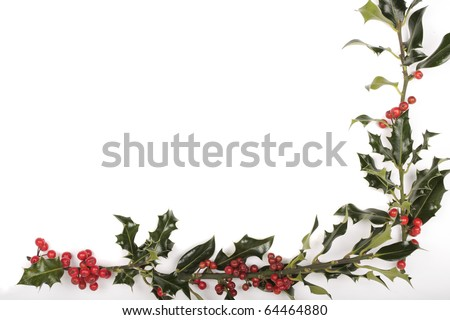 Christmas holly berries decorations