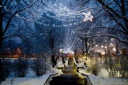 Christmas illumination in the winter park.  Grizinkalns, Riga, Latvia