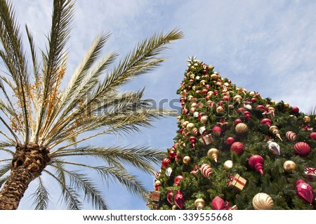 Christmas in the Tropics #339555668