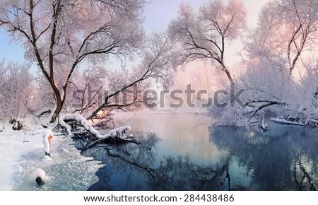 Christmas lace. Mostly calm winter river, surrounded by trees covered with hoarfrost and snow that falls on a beautiful pink morning lightistmas lace.