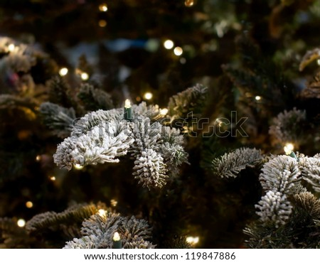 christmas lights hanging in a tree who is covered with snow