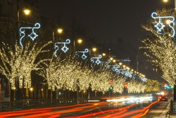 Christmas lights on a row of trees,  Budapest, Hungary