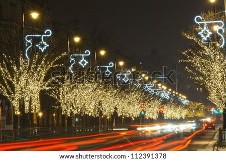 Christmas lights on a row of trees,  Budapest, Hungary