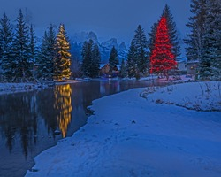 Christmas lights on Spring Creek in Canmore, Alberta, Canada