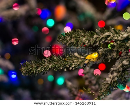 Christmas Lights on the Tree