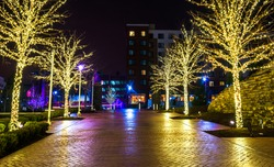 Christmas lights on trees along a path in National Harbor, Maryland at night.