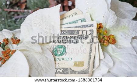 Christmas Money in White Poinsettia Flowers
