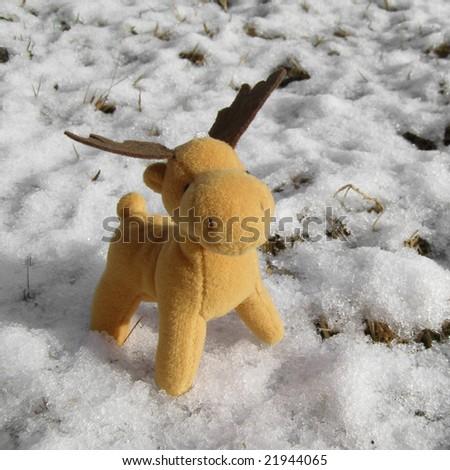 Christmas moose deer in real snow - stock photo